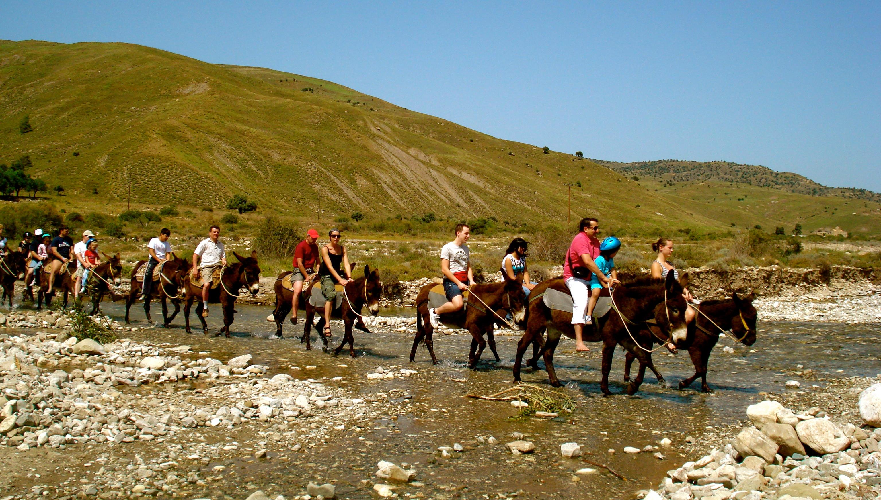 Donkey Safari - Argonaftis Tours - Titanas Travel & Tours ...